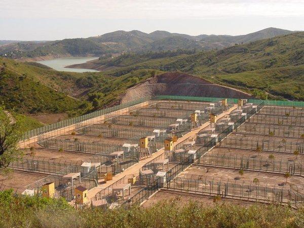 A Herdade das Santinhas (Silves) acolheu os primeiros animais a 22 de maio de 2009